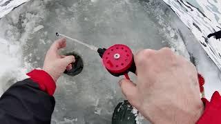 Зимняя рыбалка на Чудском озере февраль 2021 года