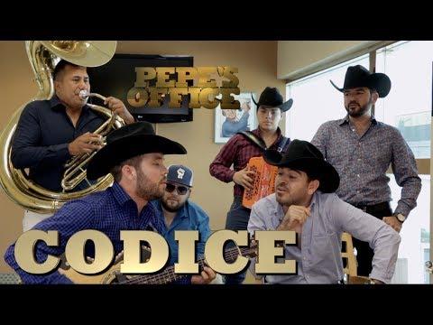 CODICE EXPLICA RUPTURA DE CODIGO FN - PepeXclusiva (Pepe's Office)