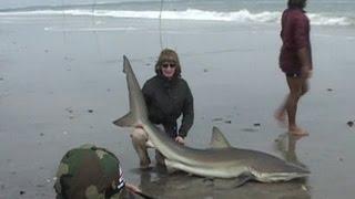 Диалоги о рыбалке. Кабо-Верде. Ловля акул(Диалоги о рыбалке. Все выпуски на канале: http://www.youtube.com/playlist?list=PLIAY-wnj76djWgk6jvqWaZ2--1UIugEdU Ведущие программы побывали..., 2015-07-15T15:59:54.000Z)