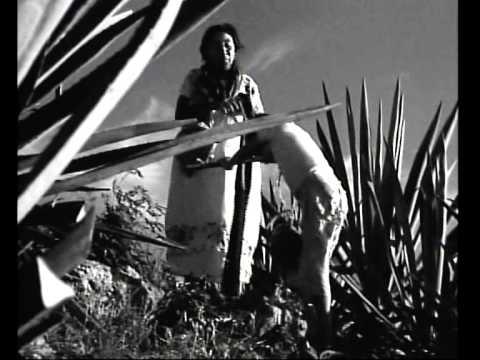 RAICES  Pelicula Mexicana 6 / 9