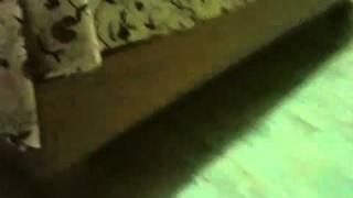 Queen Bed Frame 1