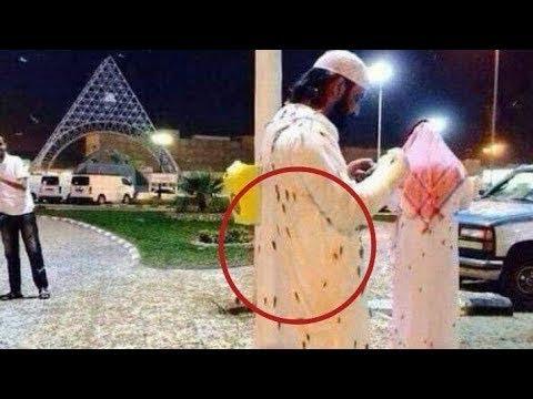 Nuée de cafard volant à la Mecque (Arabie Saoudite) ! (7 janvier 2019)
