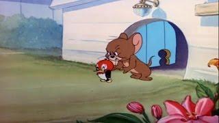 Tom e Jerry em Portugues episódio completo novo para crianças 2016 HD