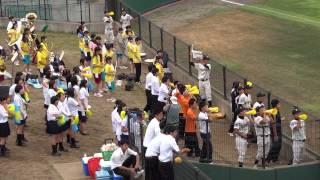130717柏の葉公園野球場 専大松戸戦.