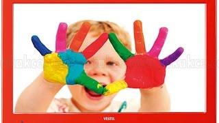 Vestel Color TV İncelemesi - Türkçe