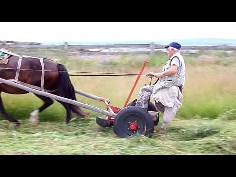Как сделать лошадь из сена своими руками