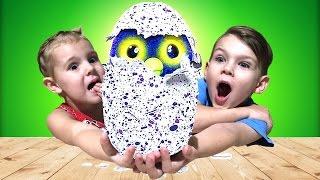 Hatchimals СУПЕР ЯЙЦО Хетчималс ИГРАЕМ ВМЕСТЕ Вылупился ДРАКОНЧИК Видео для детей Hatchimals toys