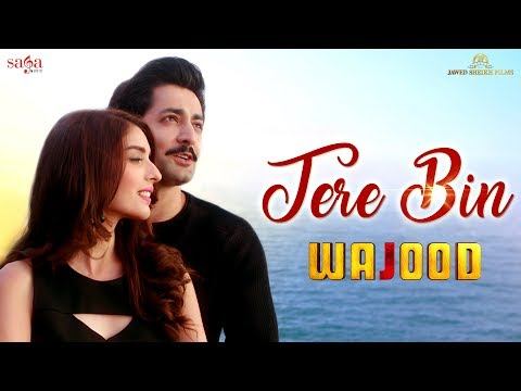Tere Bin | Wajood Movie | New Love Song | Danish Taimoor, Saeeda Imtiaz | Hindi Song 2018