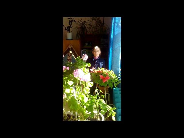 Изображение предпросмотра прочтения – ДарьяСмирнова читает произведение «У Лукоморья дуб зеленый» А.С.Пушкина