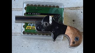 Home Built .22 Derringer Shooting