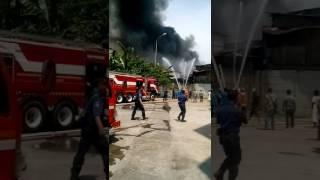 Kebakaran pemukiman warga di kapuk muara