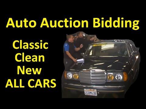 WHOLESALE CAR AUCTION BIDDING LIVE ~ DAILY CAR VLOG