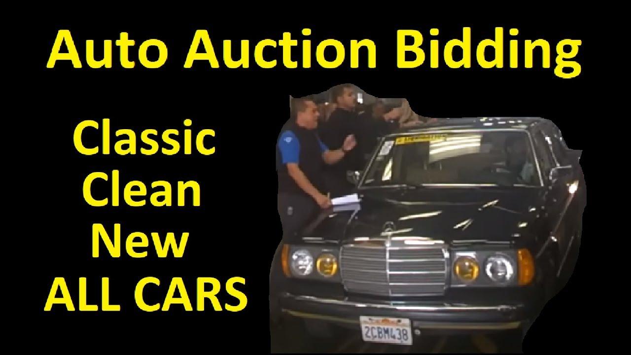 WHOLESALE CAR AUCTION BIDDING LIVE ~ DAILY CAR VLOG - YouTube