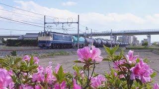 【EF65】東北線貨物列車   新白岡-久喜④【EH500】
