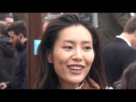 Fashion Week Paris 2011- 2019  LIU WEN  刘雯 .