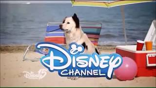 Stan the Dog ✝️ - You're Watching Disney Channel! ident