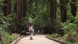 Find Your Park: Rep. Huffman at Muir Woods National Monument