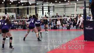 Class of 2020 DS/ Libero #11 Bree Scott  (16 Mizuno Empire  Volleyball Club)