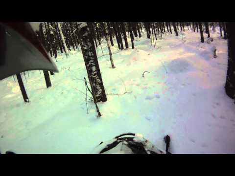 Снегоход lynx Yeti pro 550  в лесу
