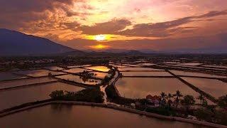 Закат над полями, Нячанг, Вьетнам с воздуха. Sunset over the fields Nha Trang, Vietnam