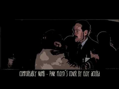 Confortably Numb - Pink Floyd´s Cover By Eloy Acosta