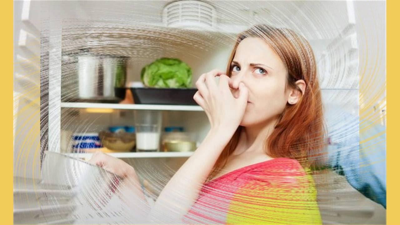 Các phương pháp khử mùi hôi tủ lạnh cực kì hiệu quả