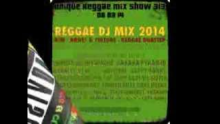 REGGAE DJ MIX 2014