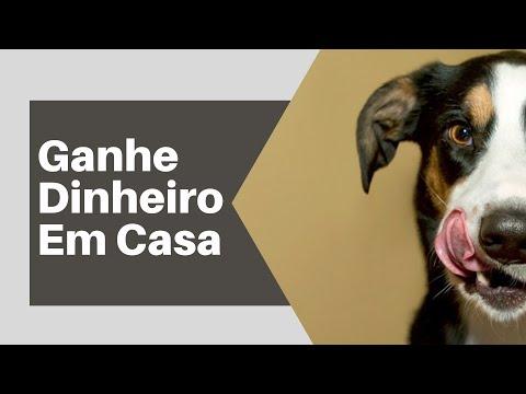 Como Ganhar Dinheiro Fazendo Biscoitos Caninos Caseiros