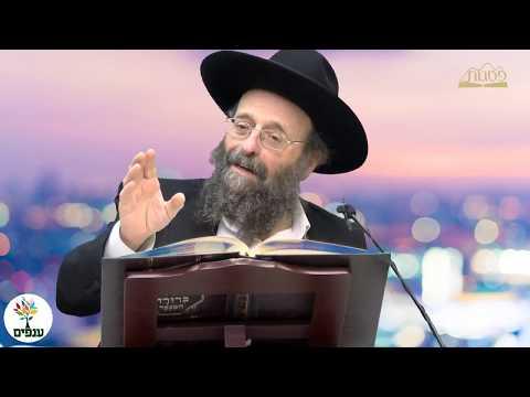 מוסר והשקפה יהודית - הרב גולדווסר HD