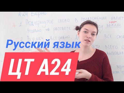 ЦТ А24.  Служебные части речи