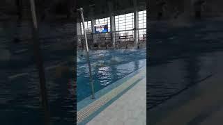Всеми любимая плавание