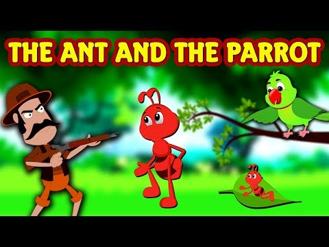 The Ant And The Parrot | English Stories For Kids | Moral Stories | Kids Story | Koo Koo TV