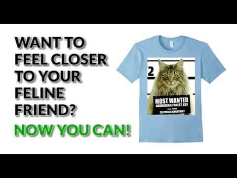 Most Wanted Norwegian Forest Cat T shirt - Men's, Women's, Kid's - Baby Blue, Black, Heather Grey