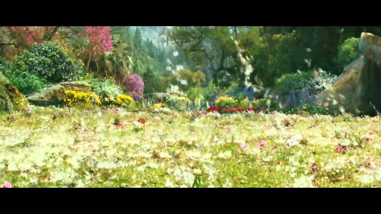 yellow flowers on the green grass movie online