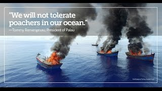 Drone Video: Illegal Fishing Boats Burn in Aerial Footage from Palau