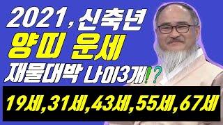 2021년 양띠운세(신축년 신년운세)(돈벼락나이 3개,결혼운1,건강운,직업운,문서운)