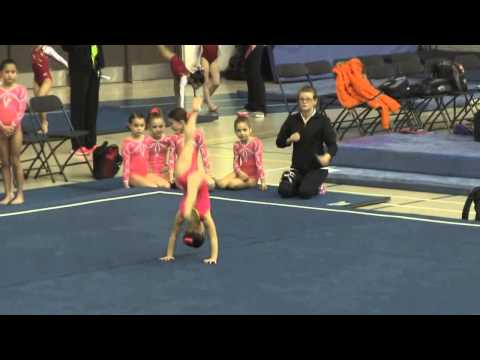 texas usag level 7 state meet gymnastics