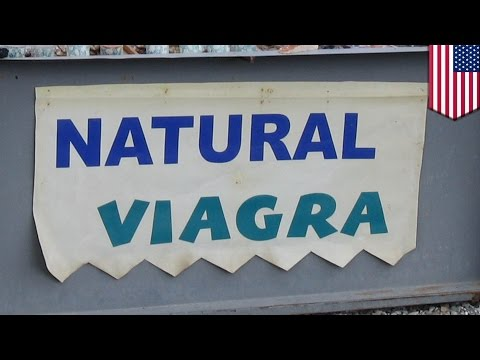 Herbal viagra effects: 'natural' viagra use could lead to extremely low blood pressure - TomoNews