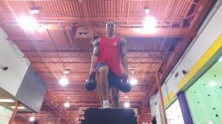 Calisthenics and Weights Hybrid Workout (Full Body) | 2018
