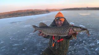 Поставили Жерлицы на Щуку на Ночь и Понеслось Последний Лёд Опасная Рыбалка на Весеннем Льду