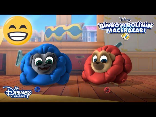 Göster ve Anlat Oyunu🖐☺ | Bingo ve Roli'nin Maceraları | Disney Channel Türkiye