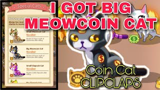I GOT BIG MEOWCOIN CAT | CLIPCLAPS COIN CAT