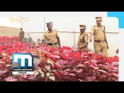 Organic Farming In T'puram Special Jail| Mathrubhumi News