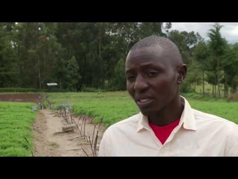Solar Power Gains Popularity in Africa