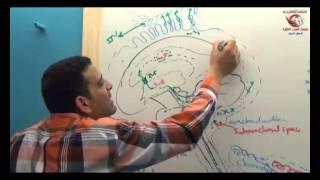 Dr Ahmed Elzainy C S F  Neuroanatomy   الدكتور احمد الزيني