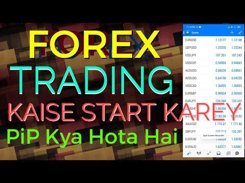 forex-trading-kaise-start-karey,-pips-kya-hai,-mera-trader-octafx-broker,