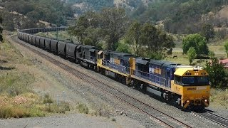 Coal Trains on 2.5% grades (1 in 40) - Main North 7 Nov 2013: Australian Trains