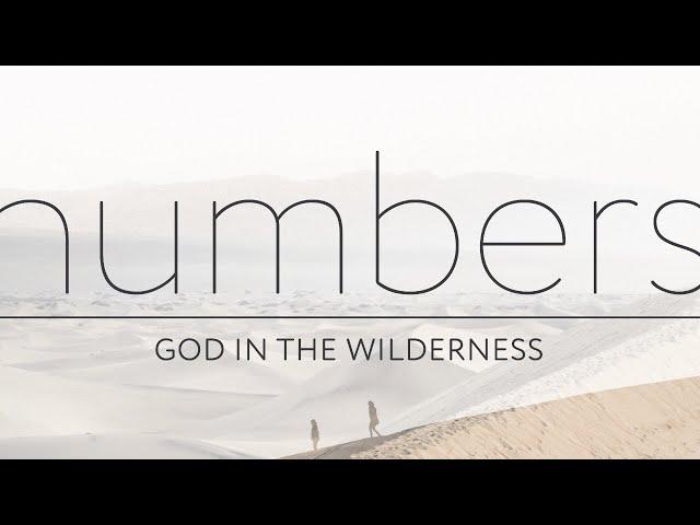 6 December 2020 Livestream | Numbers 8:1-9:14 -
