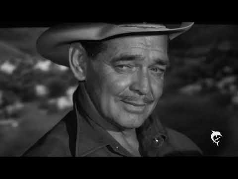 Tribute to Clark Gable