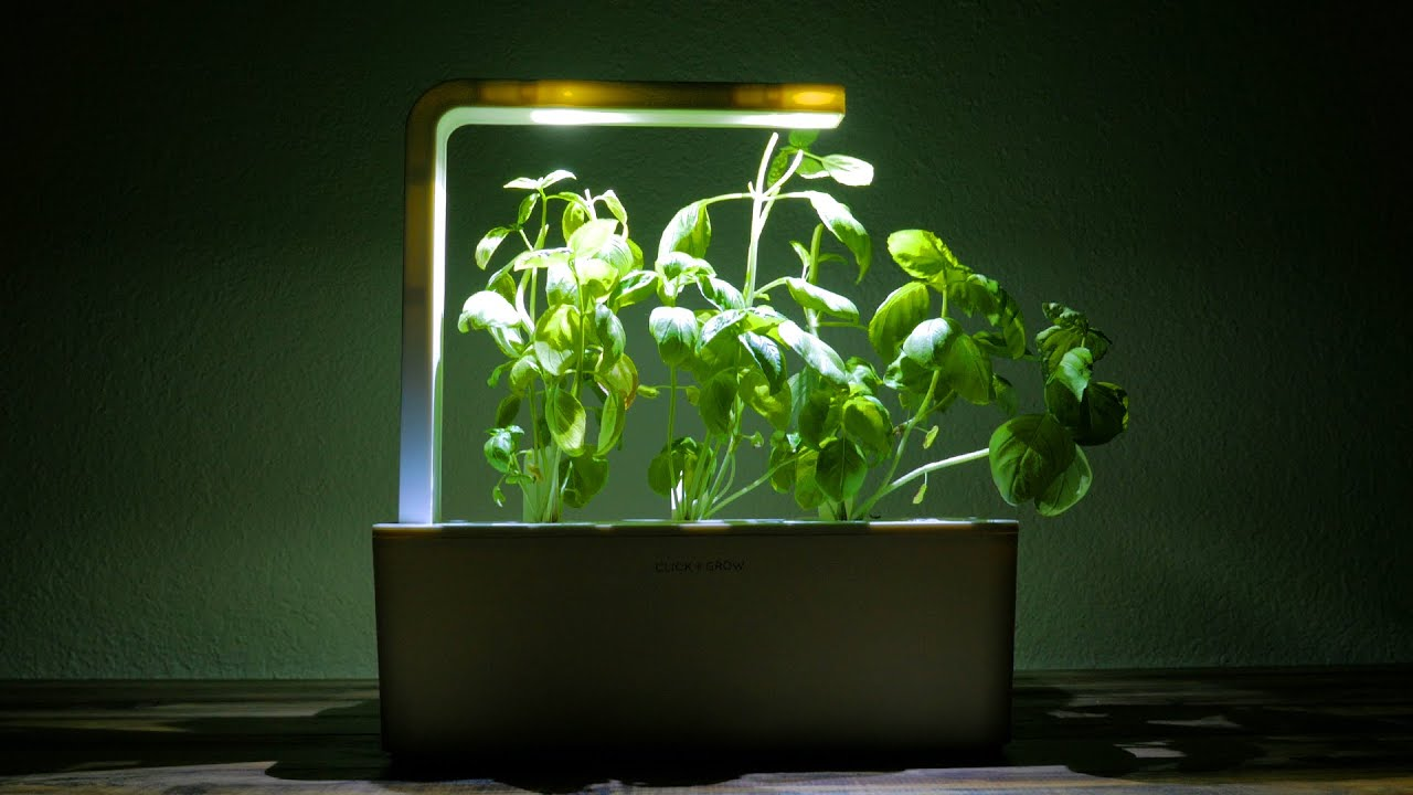 Click Grow Smart Herb Garden Review Youtube